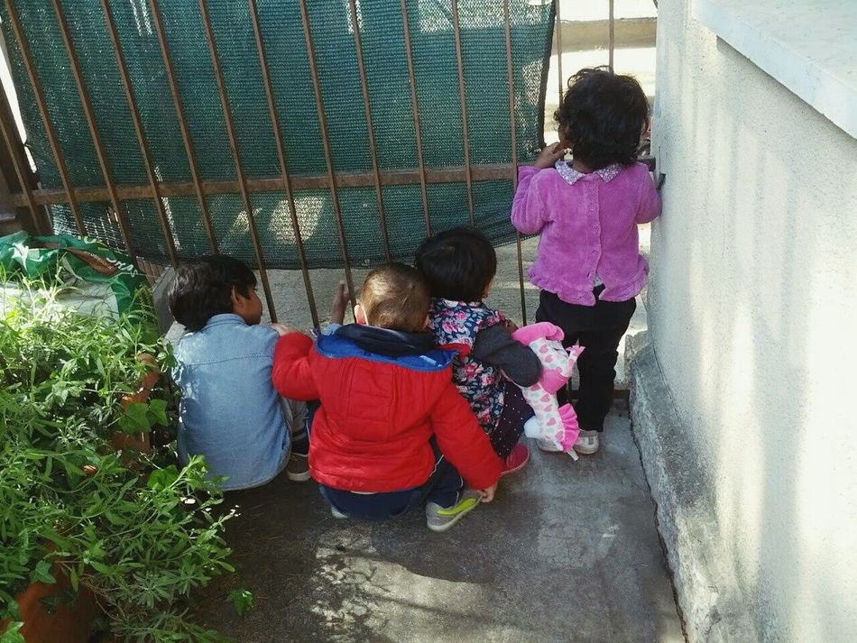 Children Photography Curiosity Behind The Gate Group Children Of The World