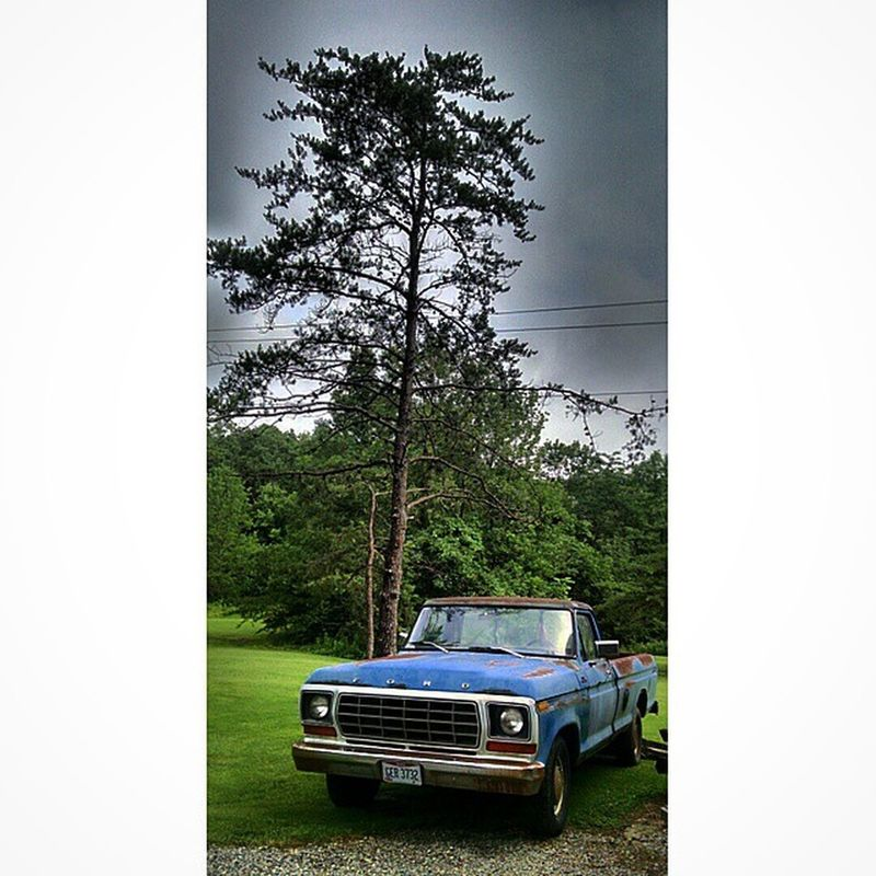 I loved this truck as soon as i seen it ❤ Instasize Green Blue White Black Sky Beautiful Beauty Clouds Storms Like Follow Instagood Instadaily Nature Instagram God Hiscreation Wonderful Justalittle Justalittlephoto Converse Allstar Rocks Rusted ford vintage truck tree summer