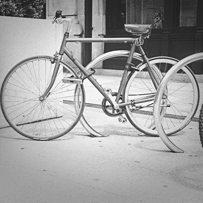 EyeEm Masterclass Blackandwhite Bike Elwood