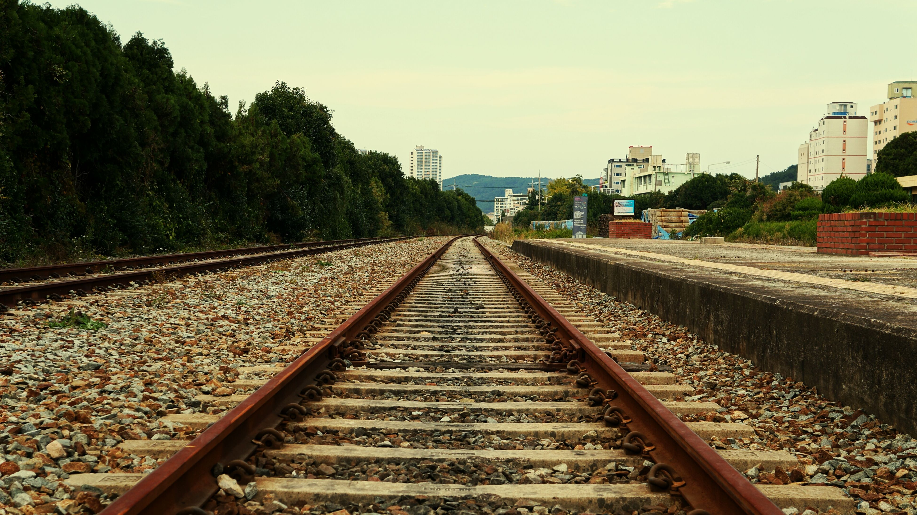 railroad track, rail transportation, the way forward, diminishing perspective, transportation, vanishing point, tree, sky, built structure, railway track, architecture, public transportation, day, straight, outdoors, metal, building exterior, connection, clear sky, no people