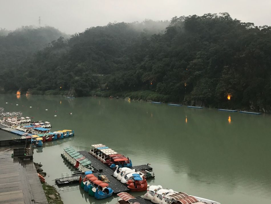 Xindian lake Taipei Taiwan Bitan Xindian Nautical Vessel Water Transportation Mode Of Transport Tree Moored Boat Nature High Angle View Beauty In Nature Outdoors River Scenics Day Wooden Raft Real People Pedal Boat