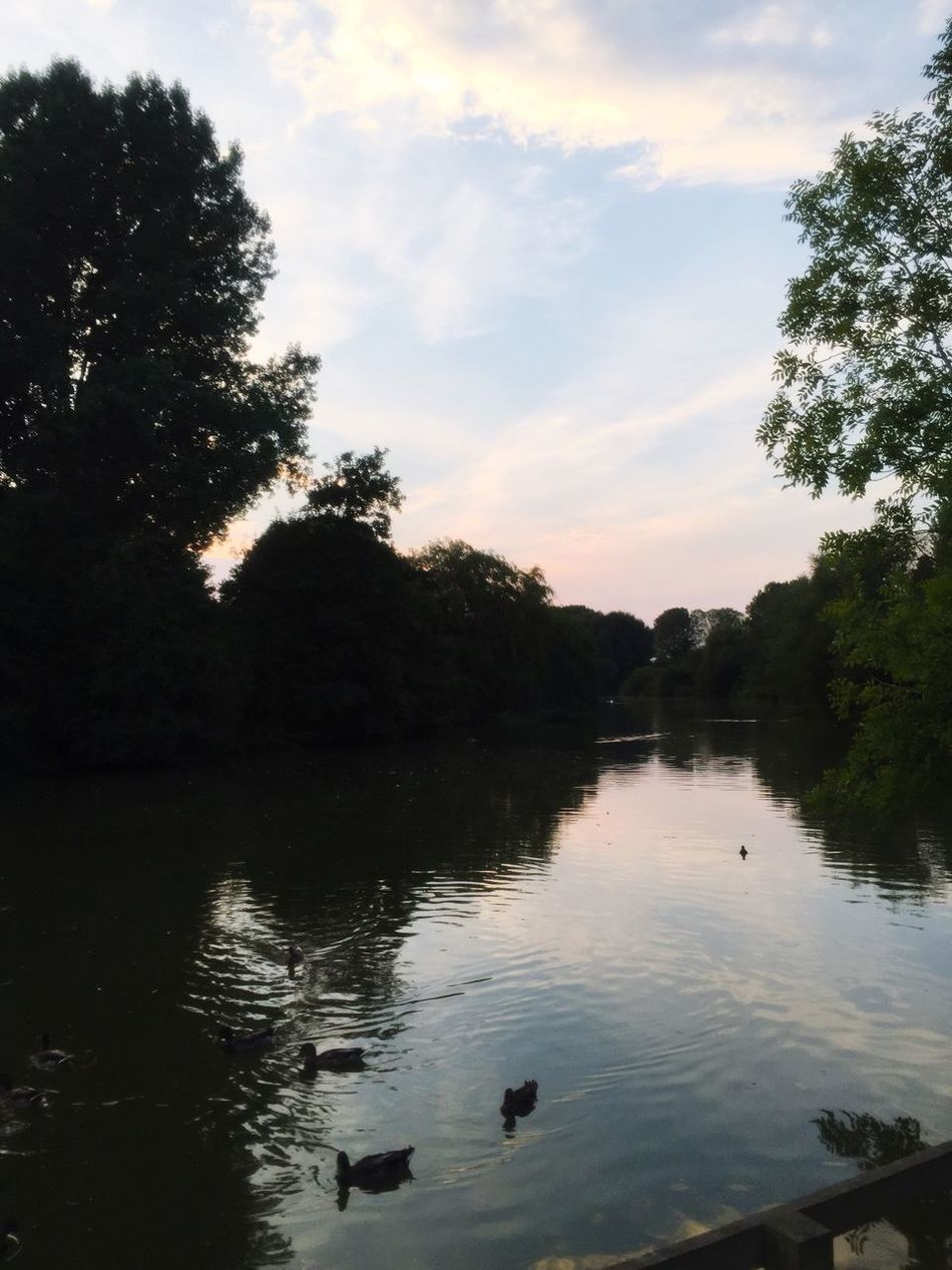 Brackley lake Water Reflection Lake Tranquility First Eyeem Photo