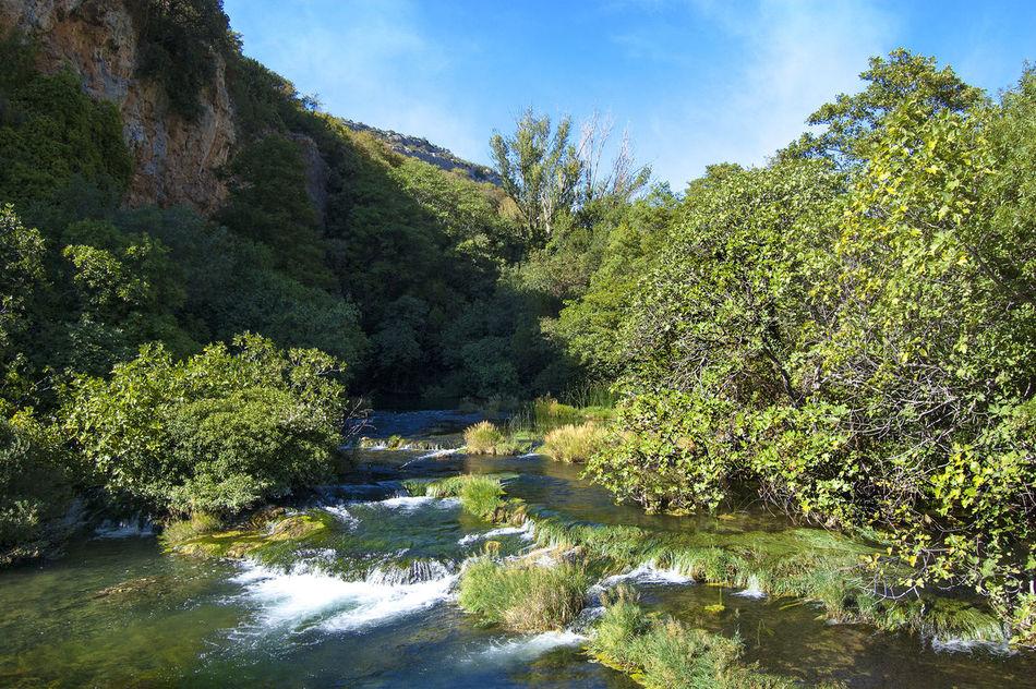 Beautiful stock photos of river, Day, Flowing, Flowing Water, Forest