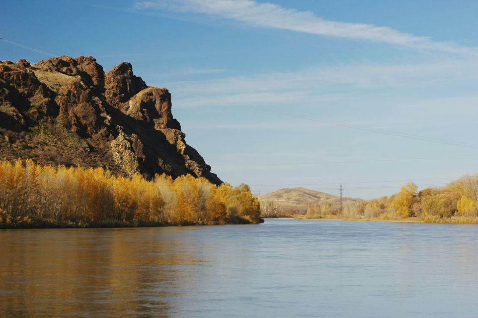 Fall Beauty Fall Colors River View Relaxing Orange Color Shadows & Lights Gold Colored Yellow Scenics Outdoors Nature Golden Hour Enjoying Life Uba Tranquility