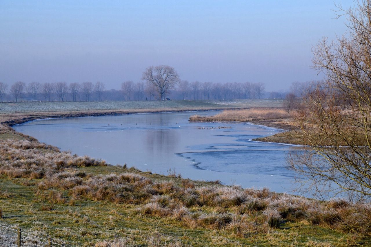 Tree Nature Water Tranquil Scene Beauty In Nature Tranquility Outdoors Scenics Lake No People Sky Day Animals In The Wild Bird Animal Themes Blue Dutch Countyside Dutch Landscapes Winter Landscape