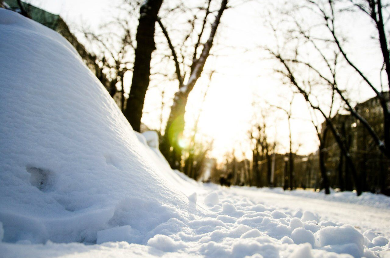 Beautiful stock photos of moscow, Bare Tree, Beauty In Nature, Cold Temperature, Covered