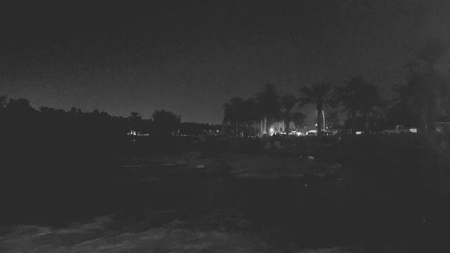 Black woods... Black B&w Feelinglost EyeEm Beautiful Day Beauty In Nature Lostplaces Brokensoul Darkthoughts Darkpath ColdNight Blackandwhite ChangeOfMind Playwithlife Lonelymountain Talltrees Trees Woods