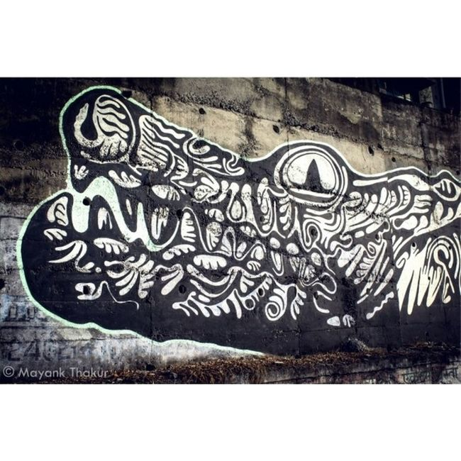 """CROX"" Crocodile Mural by an Indian Artist Amitabh Kumar. Streetart Graffiti Mural Creative Art Passion Travel Pune India Puneclickarts Mypixeldiary @natgeocreative @thephotosociety"
