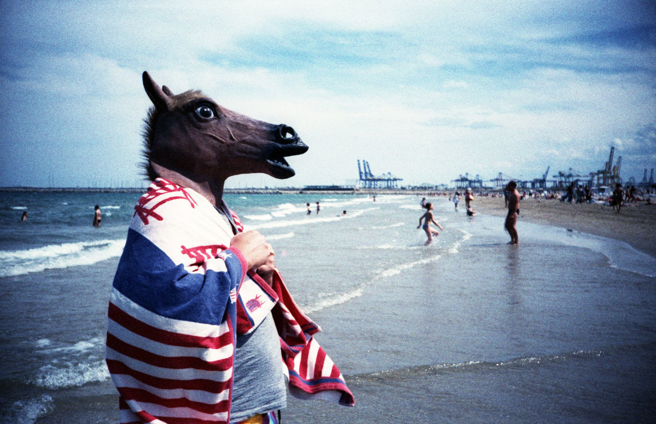 Beautiful stock photos of swimming, Adult, Animal Head, Animal Representation, Beach