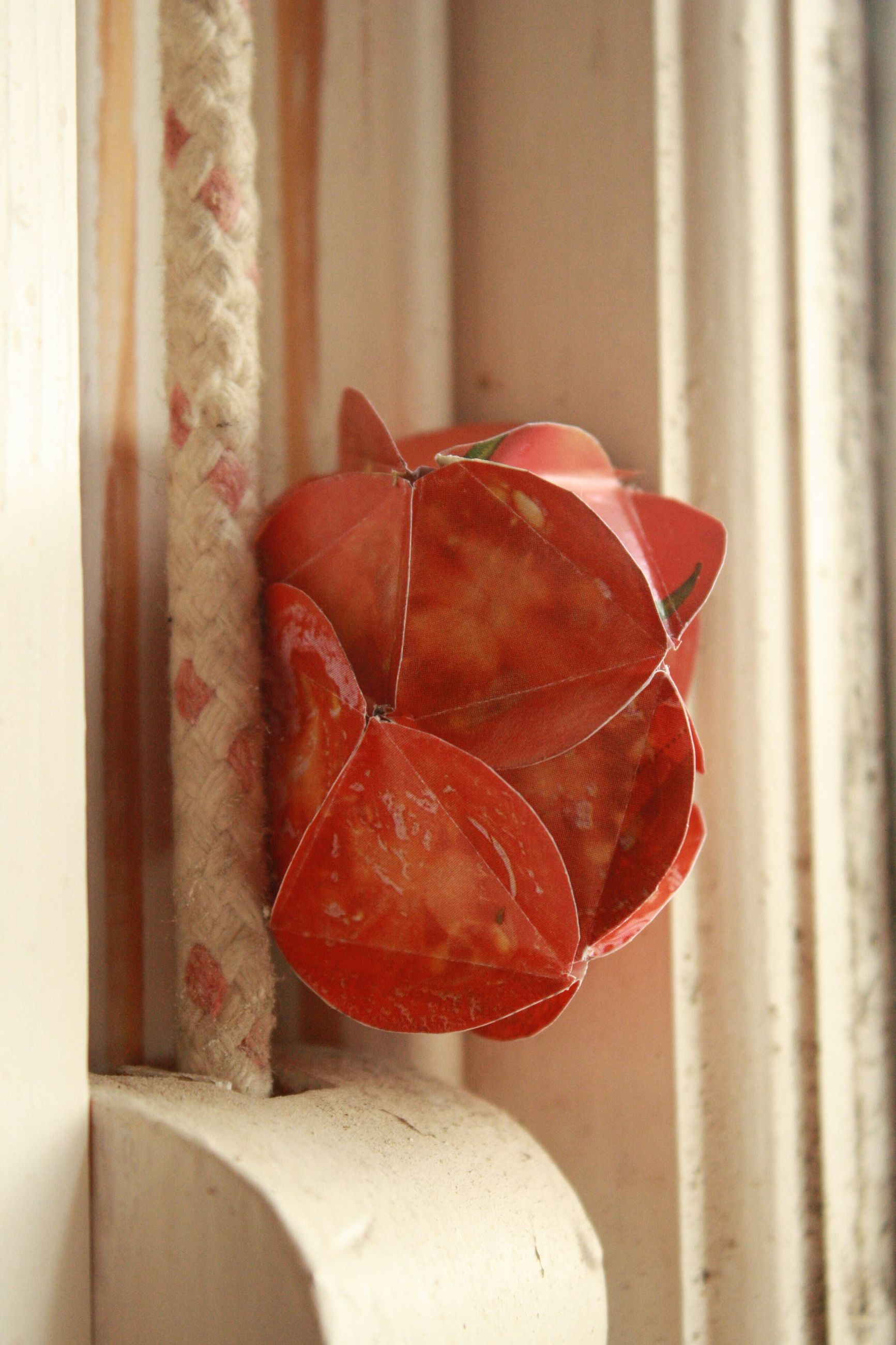 red, close-up, indoors, leaf, freshness, focus on foreground, wall - building feature, no people, wet, fragility, day, nature, drop, stem, fruit, orange color, wood - material, season, growth