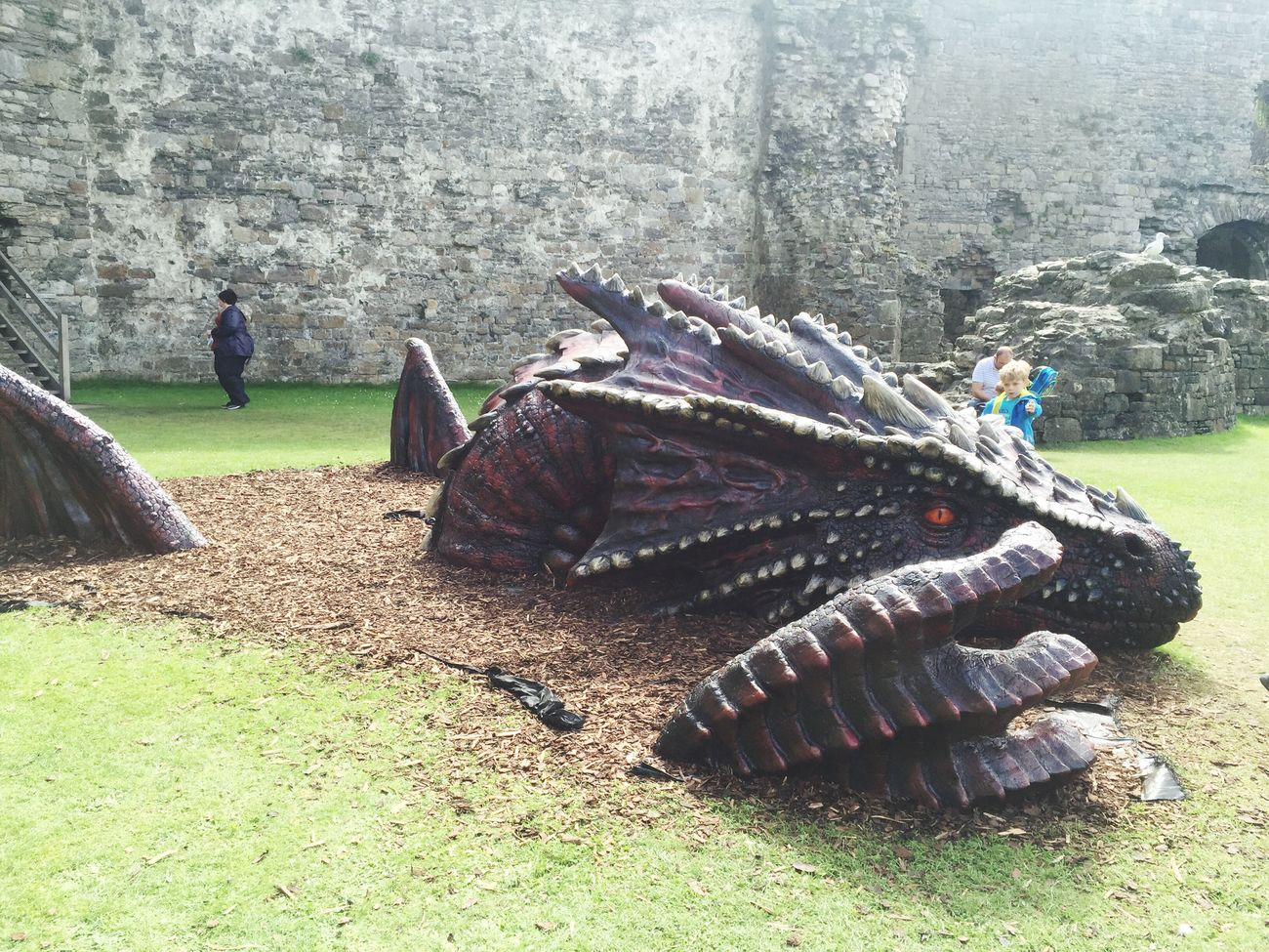 Dragon Beaumaris Castle, Isle of Anglesey Tourism First Eyeem Photo