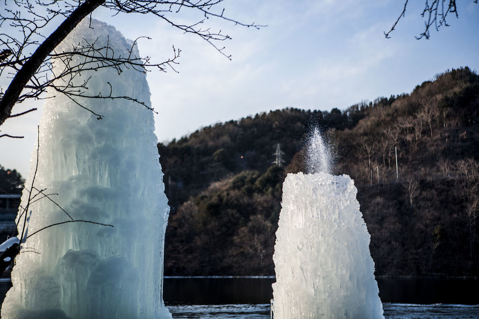 Beautiful stock photos of north korea, Branch, Chuncheon, Cold, Cold Temperature