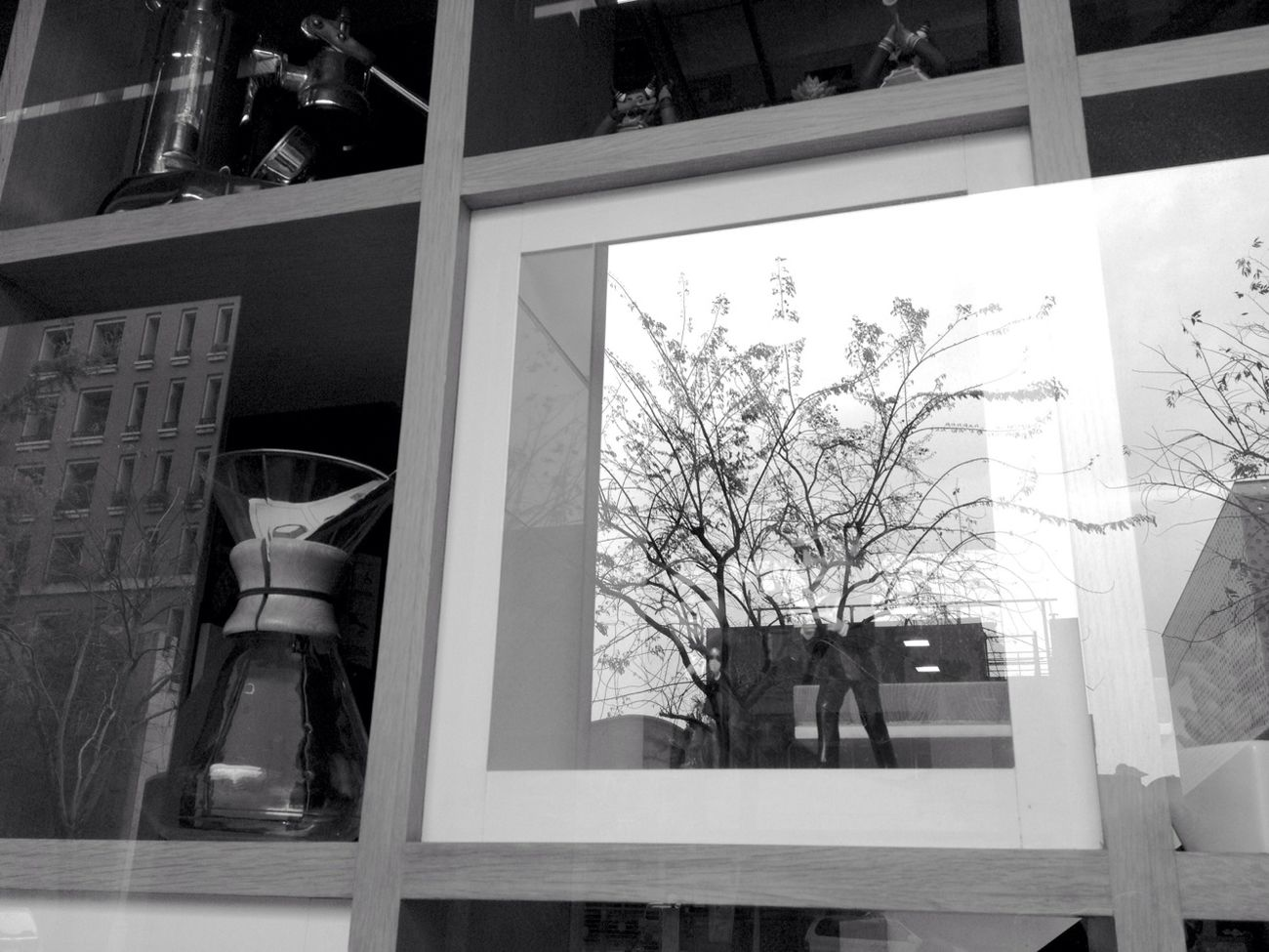 Reflection Blackandwhite Diveeverydaylife