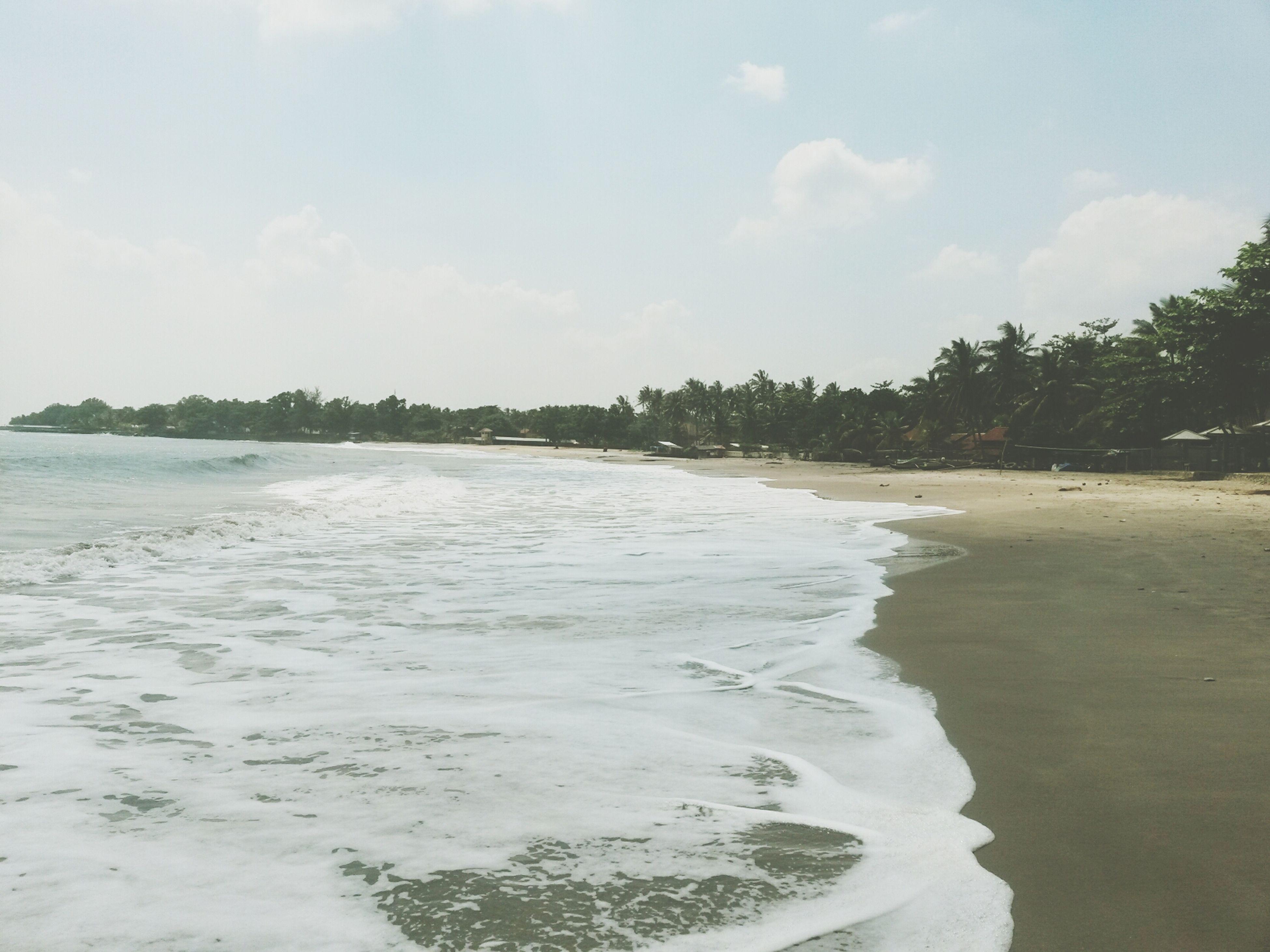 beach, water, sand, shore, sea, sky, tranquil scene, tranquility, scenics, beauty in nature, nature, tree, wave, coastline, idyllic, day, surf, cloud - sky, outdoors, non-urban scene