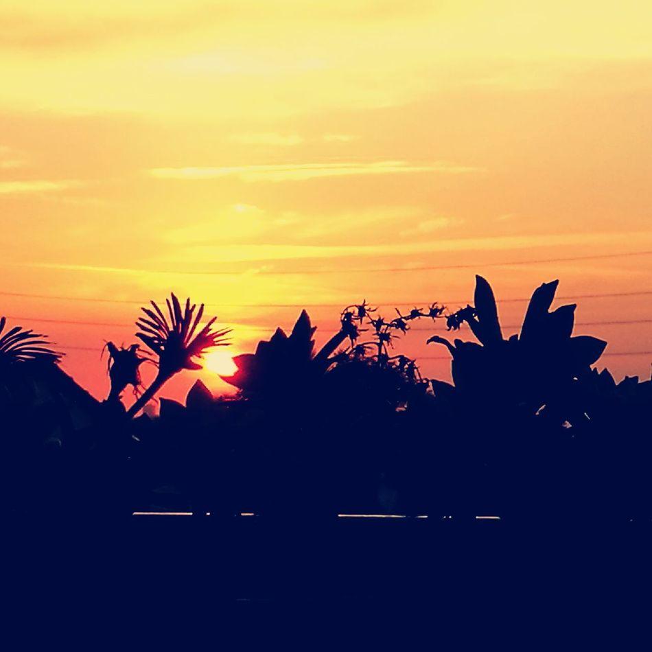 Sunset Beautifulworld Beautifulthings HuaweiP9 Huaweiphotography Skylovers Paris ❤