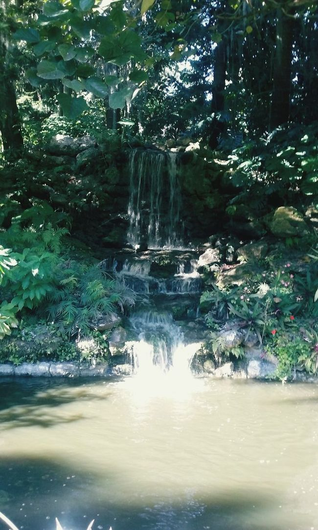 Waterfollows Waterfalls Nature