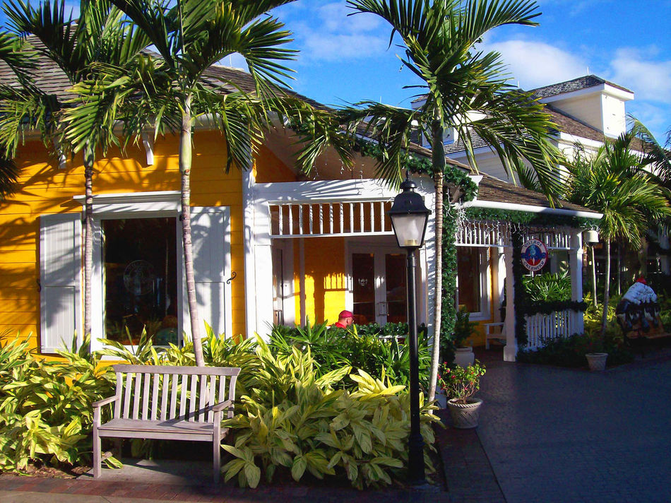 The ice cream shop in Marina Village at dusk. Architecture Building Exterior Outdoor Mall Outdoors Palm Tree Store Tropical Paradise Vacation