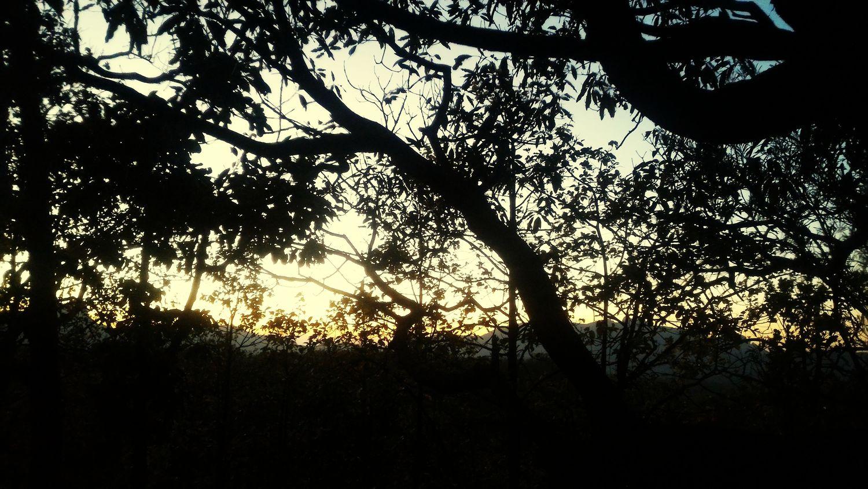 Sun is shining Urban Sunset Naturecolor Horizon BLACKSHADES Yellow Sky Warmthandsunshine