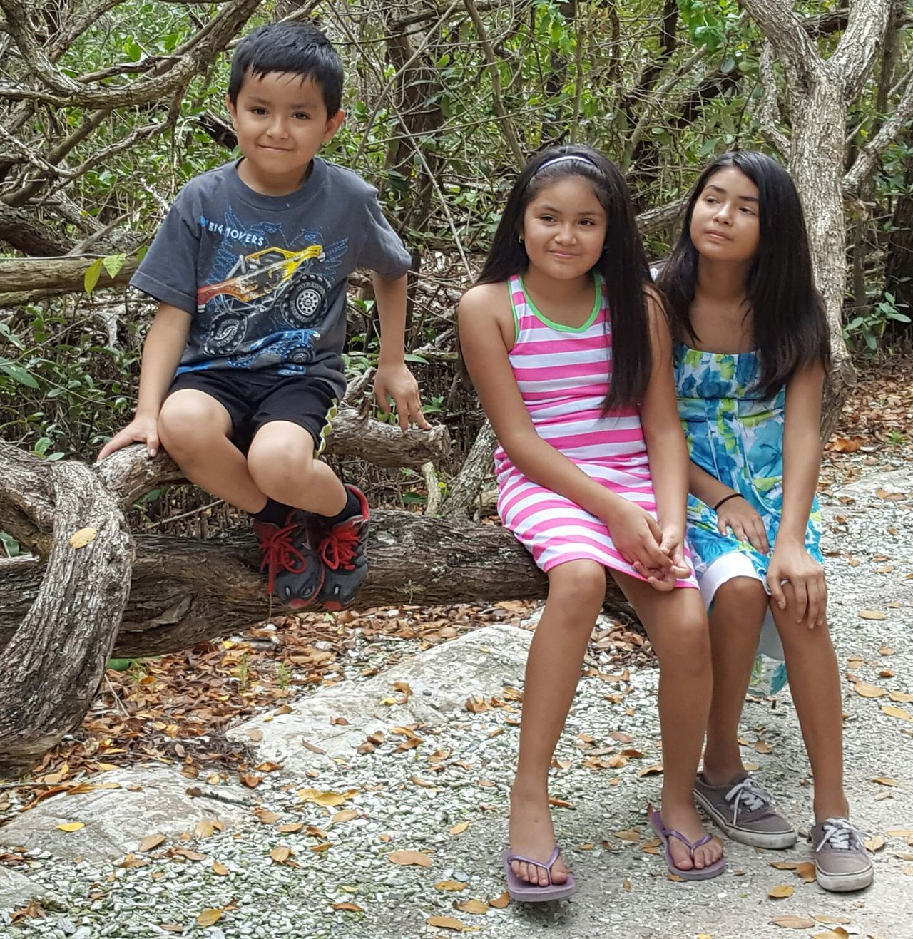 Nephew and nieces Nephew  Nieces Family Matters Family Time Desoto National Park Sitting On A Tree Photoshoot Nature Photography Out And About Bradenton FL Love These Kiddos Siblings How Cute Are They