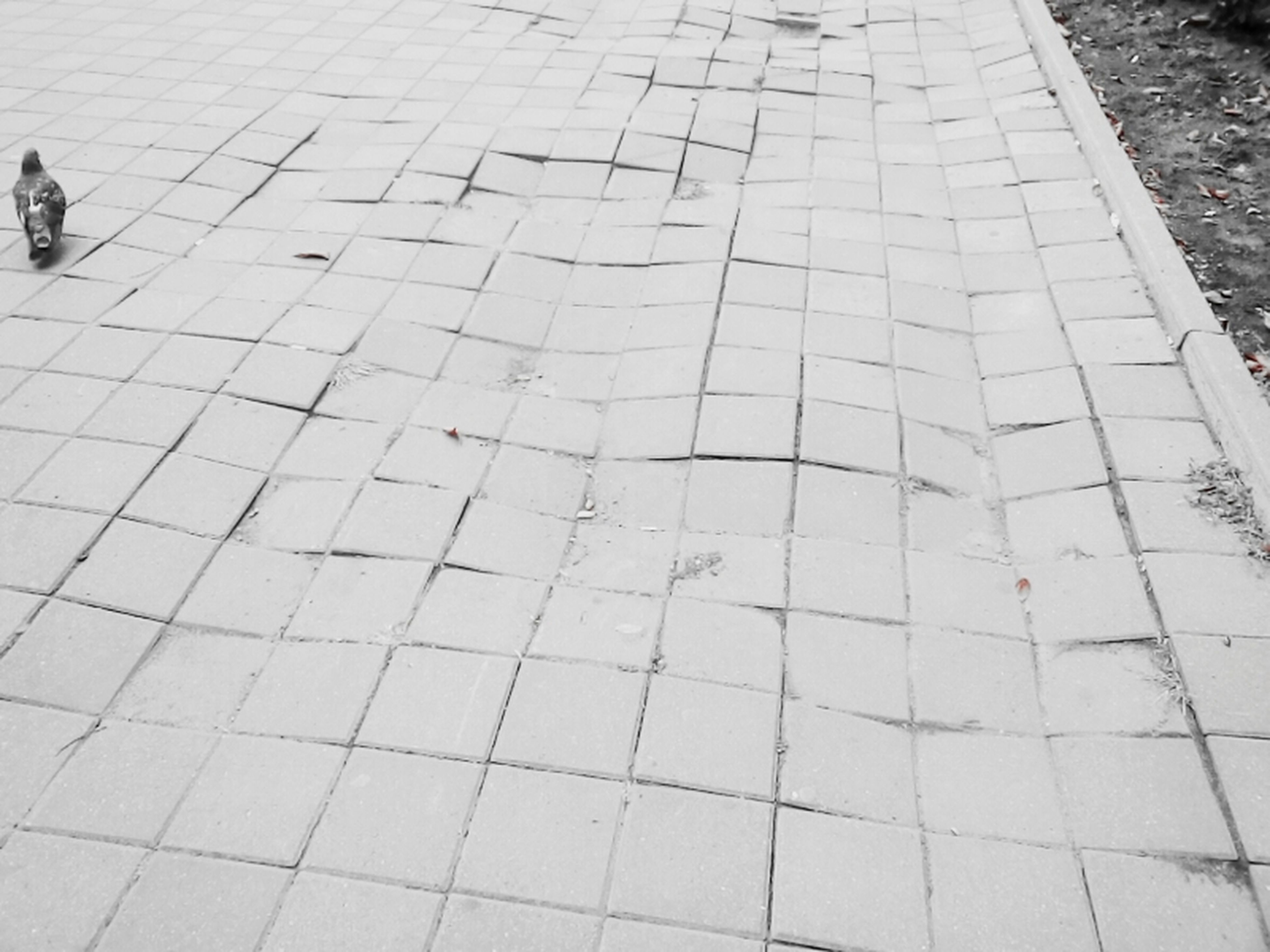 paving stone, day, footpath, stone material, outdoors, the way forward, geometric shape