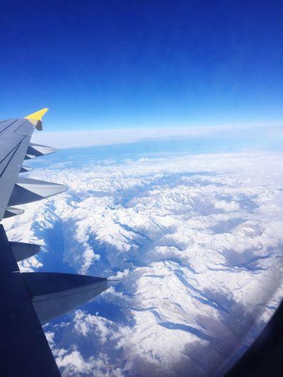 Sky Flying Plane Wing Blue Sky Blue White High