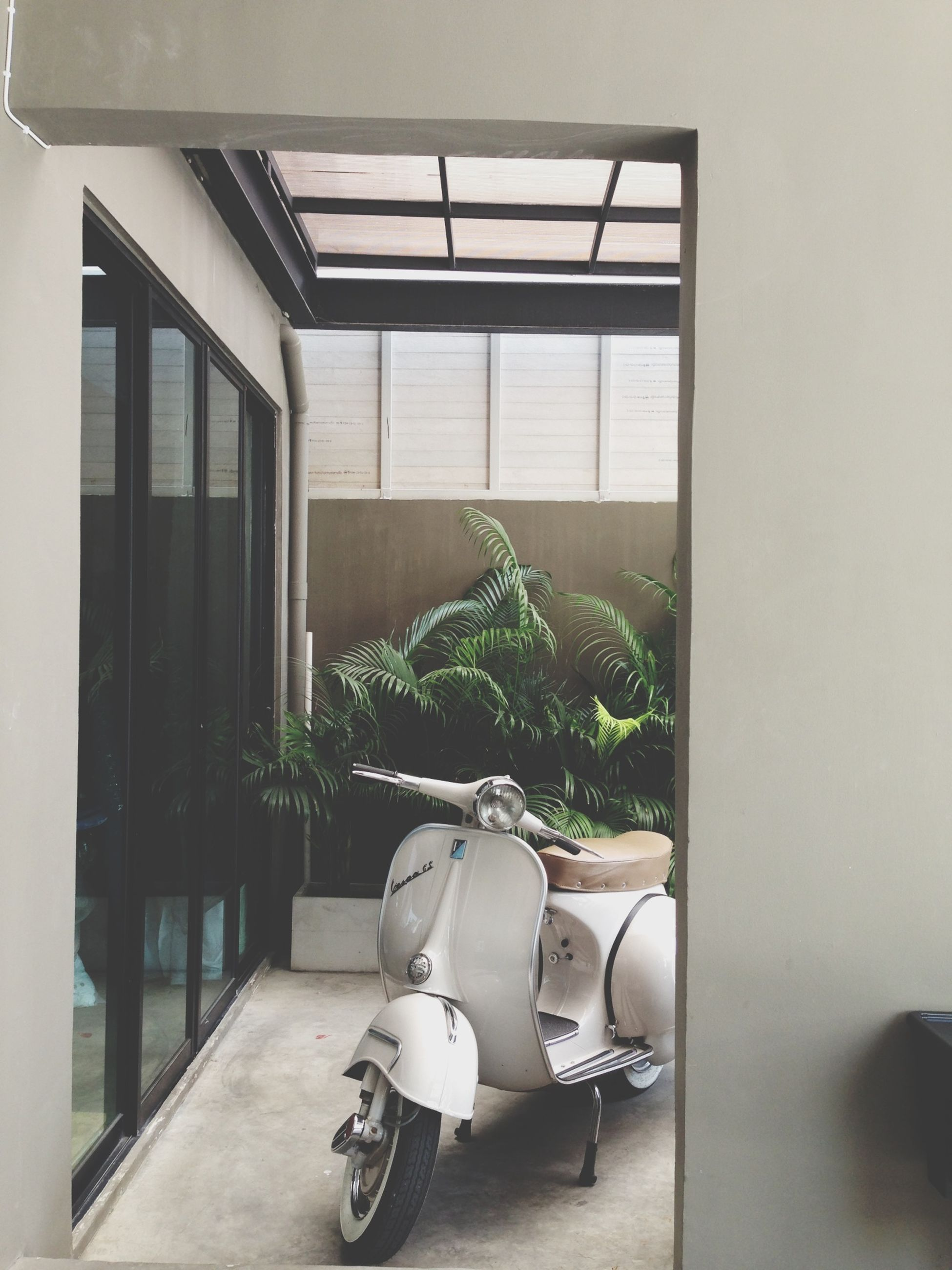 architecture, built structure, window, potted plant, indoors, building exterior, plant, bicycle, house, day, wall, wall - building feature, growth, chair, building, table, flower, sunlight