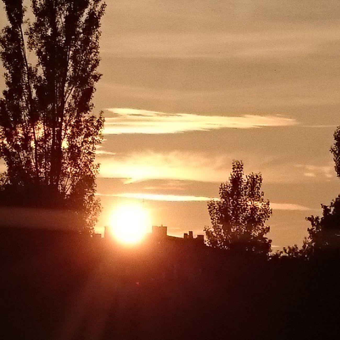Kslive Kassel Kasselgram Sonne Sonnenuntergang Nordstadtpark Sommer Z1 Sony Original