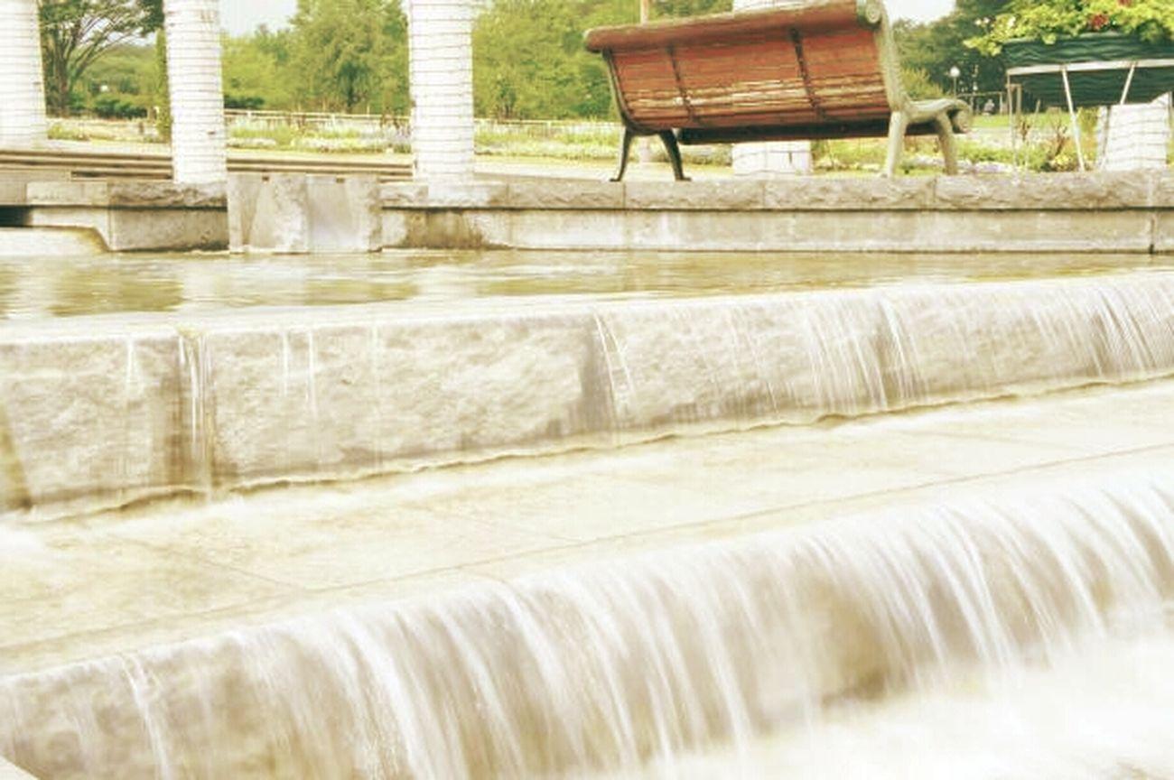 夏は水遊びしたいなぁ(*´˘`*)♡ Water_collection 水辺 川じゃないよ