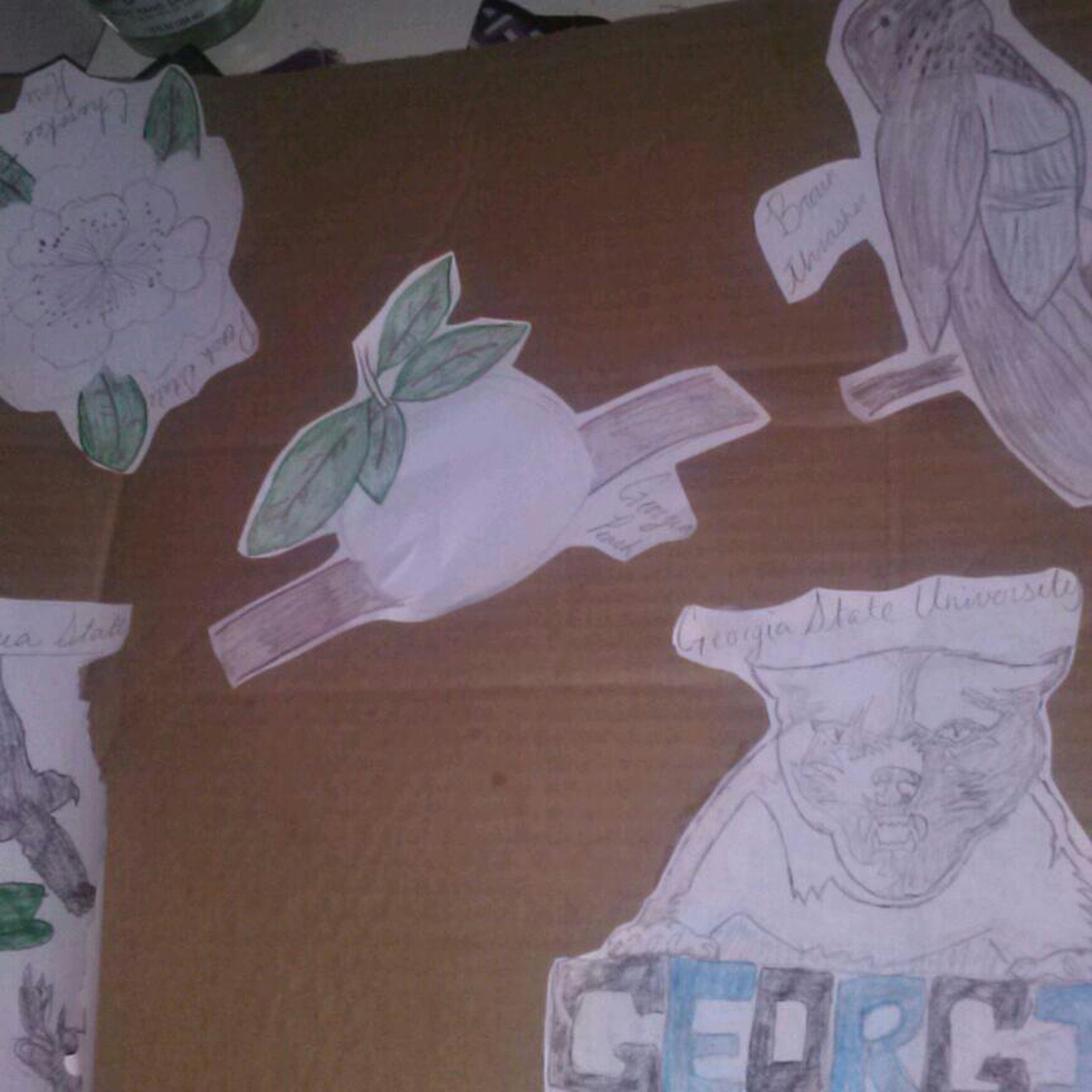 I Drew My Sista Pictures 4 Her Project .yea I Can Braw