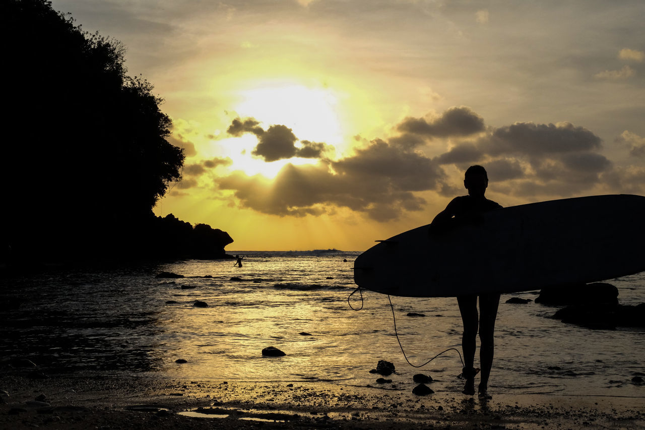 sea, sunset, silhouette, sky, nature, beach, water, animal themes, one animal, cloud - sky, beauty in nature, scenics, tranquility, horizon over water, outdoors, mammal, no people, day