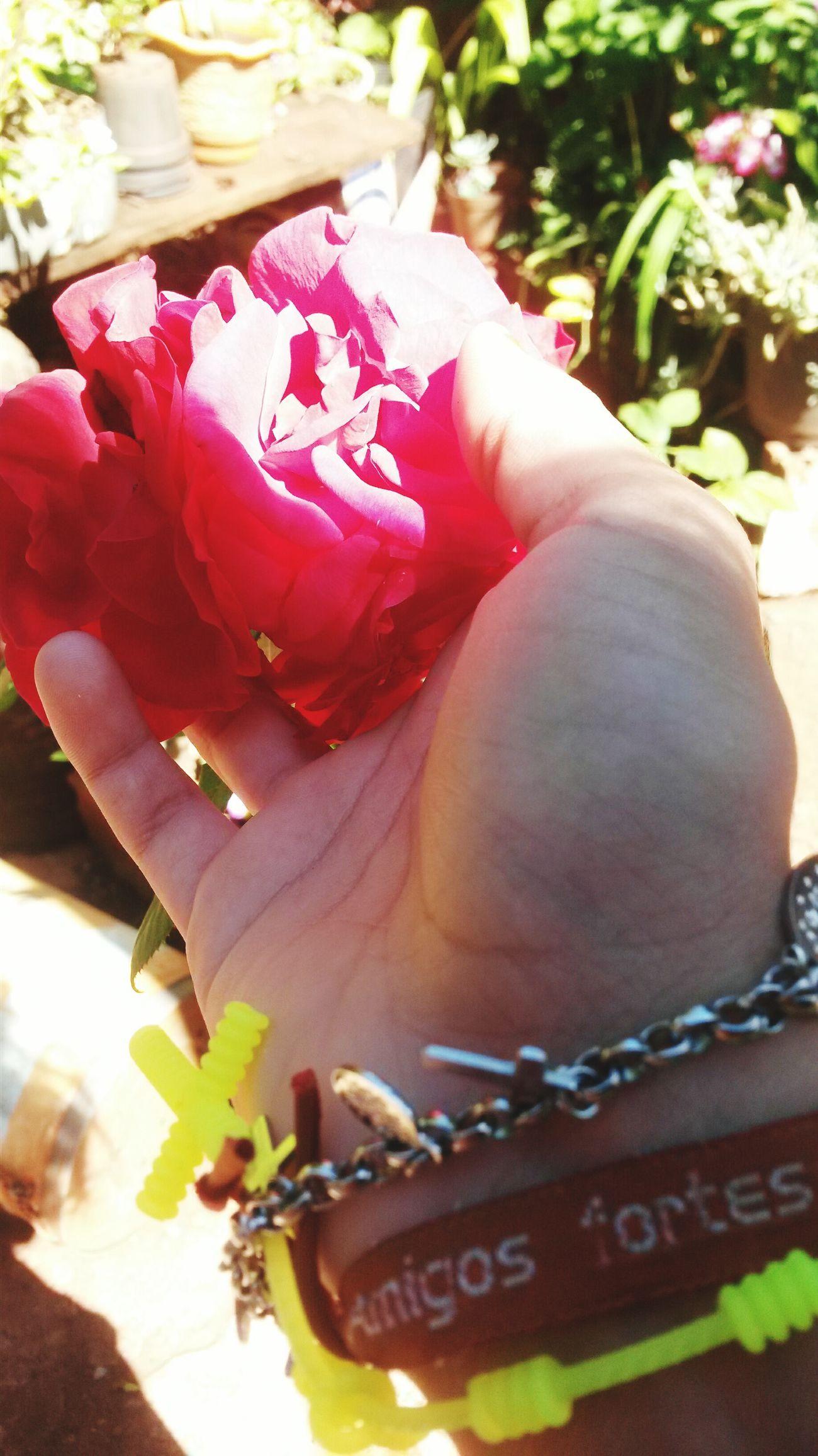 Meu bem, eu te desejo flores.. Exploring First Eyeem Photo