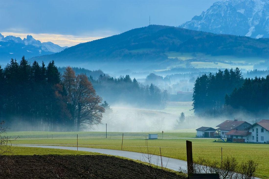 A foggy morning somewhere in bavaria ;-) Bavaria Fog Foggy Hiking Landscape Mountains Niederbayern Outdoors Scenics Teisendorf
