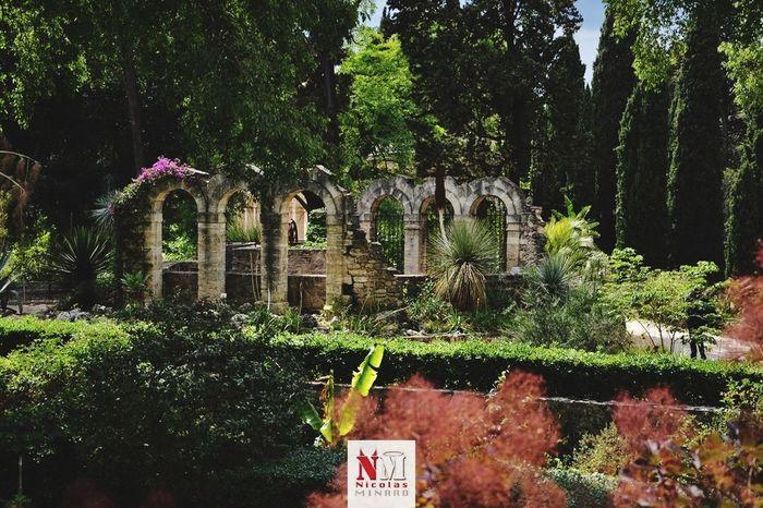 Monpellier France Jardin Garden Garden Photography First Eyeem Photo Ruine