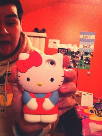 New Hello Kitty case. =^.^=