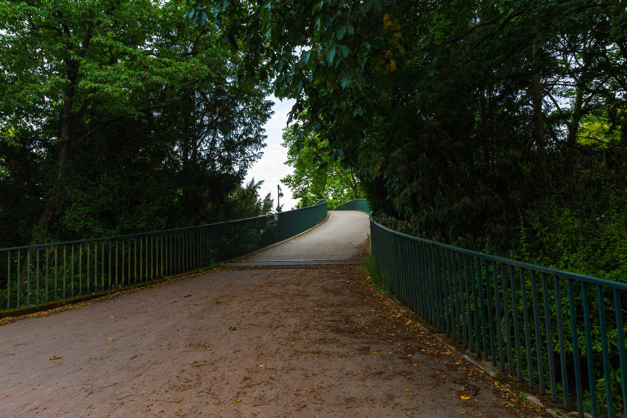 railing, the way forward, tree, nature, tranquil scene, bridge - man made structure, tranquility, growth, outdoors, day, footbridge, no people, scenics, forest, beauty in nature