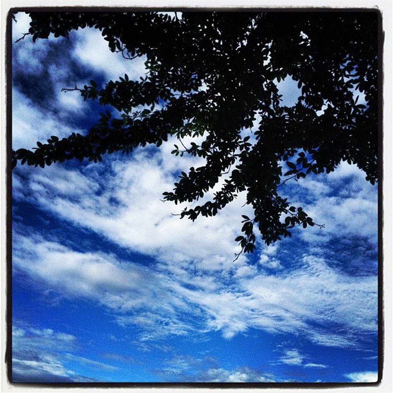 เธอเห็นท้องฟ้านั่นไหม......???