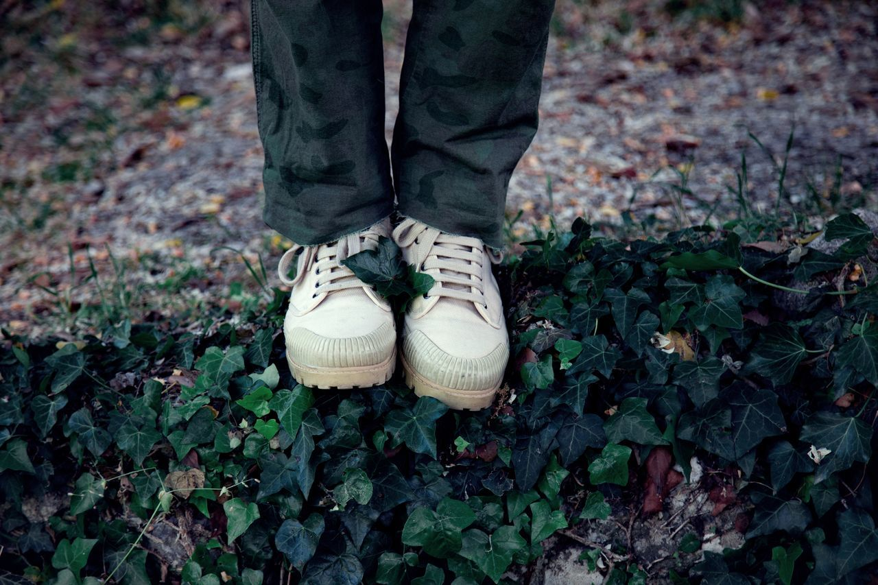 Close-up Day EyeEmNewHere Human Body Part Human Leg Leaf Low Section Men Nature One Person Outdoors People Real People Shoe Standing