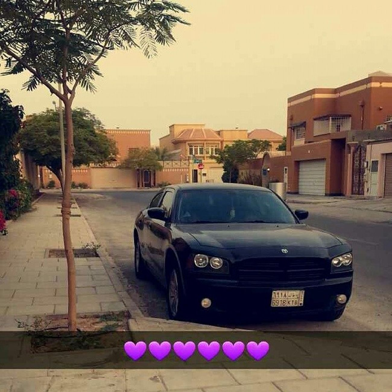 Dodgecharger || By Me ??