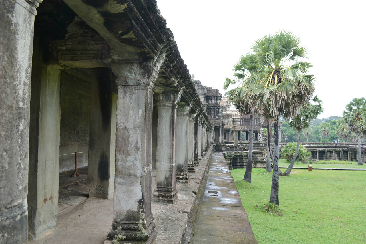 #angkor Wat #asia #cambodia #instatravel #landscape #photography #ruins #siemreap #travel #travelphotography Ancient Civilization Architecture History Nature Outdoors Tree
