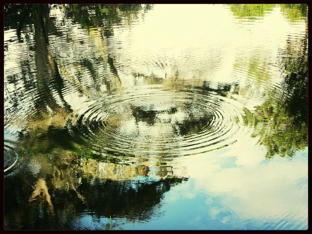 Sintra Monserrate.. the lake and the circle I Love This Picture  Take Photos Taking Photos I LOVE PHOTOGRAPHY