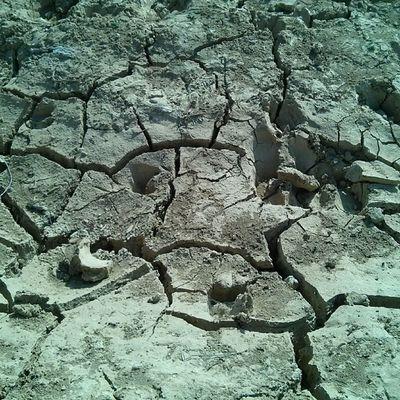 Parched Earth Jaisalmer Desert Rajasthan