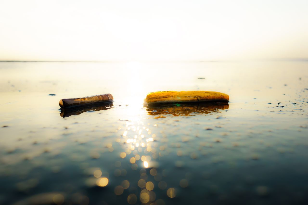 danger, bad habit, no people, selective focus, close-up, addiction, water, risk, outdoors, sky, nature, day