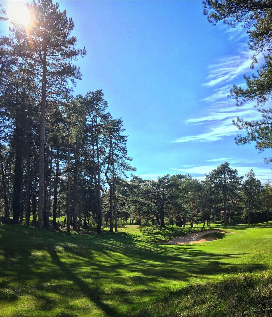 Golf d'Hardelot ⛳️ Golf Hardelot Iphonese Sun