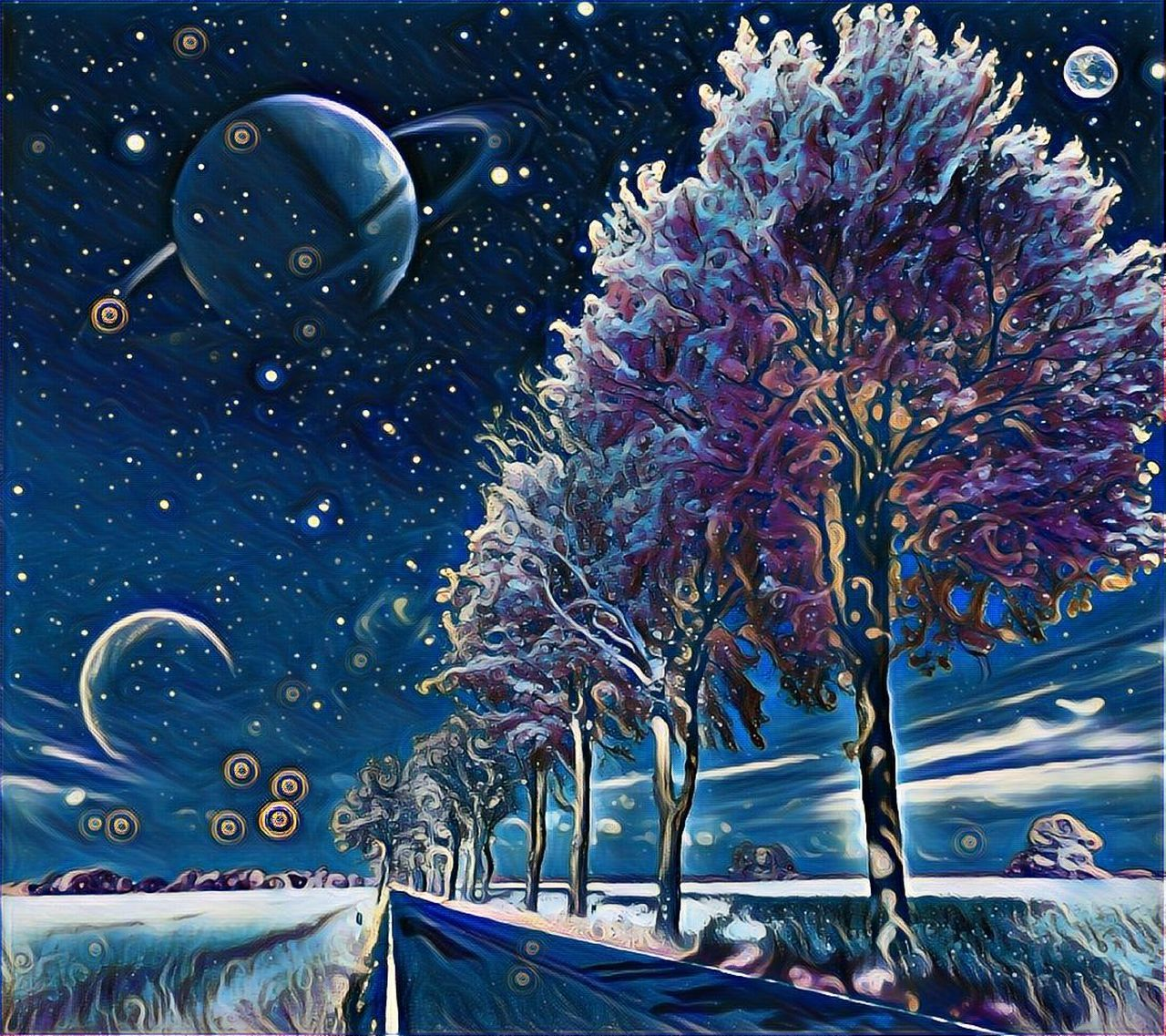 Beauty In Nature Flower Magic Nature Night Night View No People Outdoors Planets Road Sky Space Stars