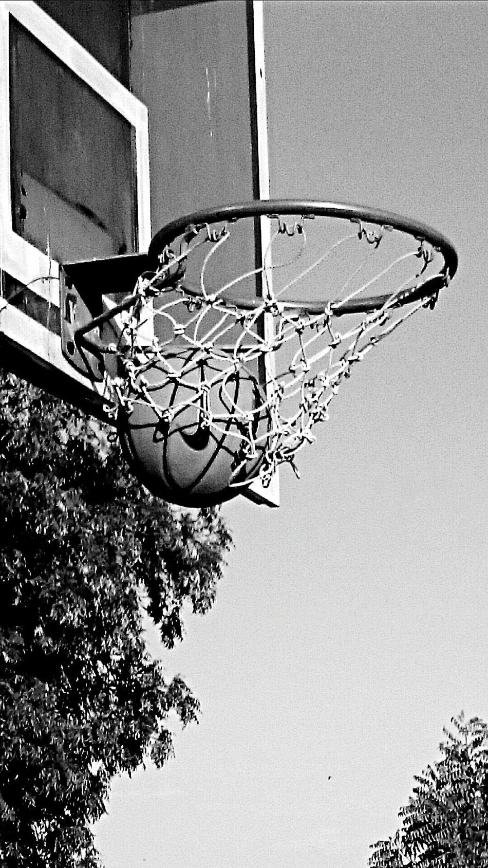 My Hobby Xperiaz2photography Cazri Court Nike