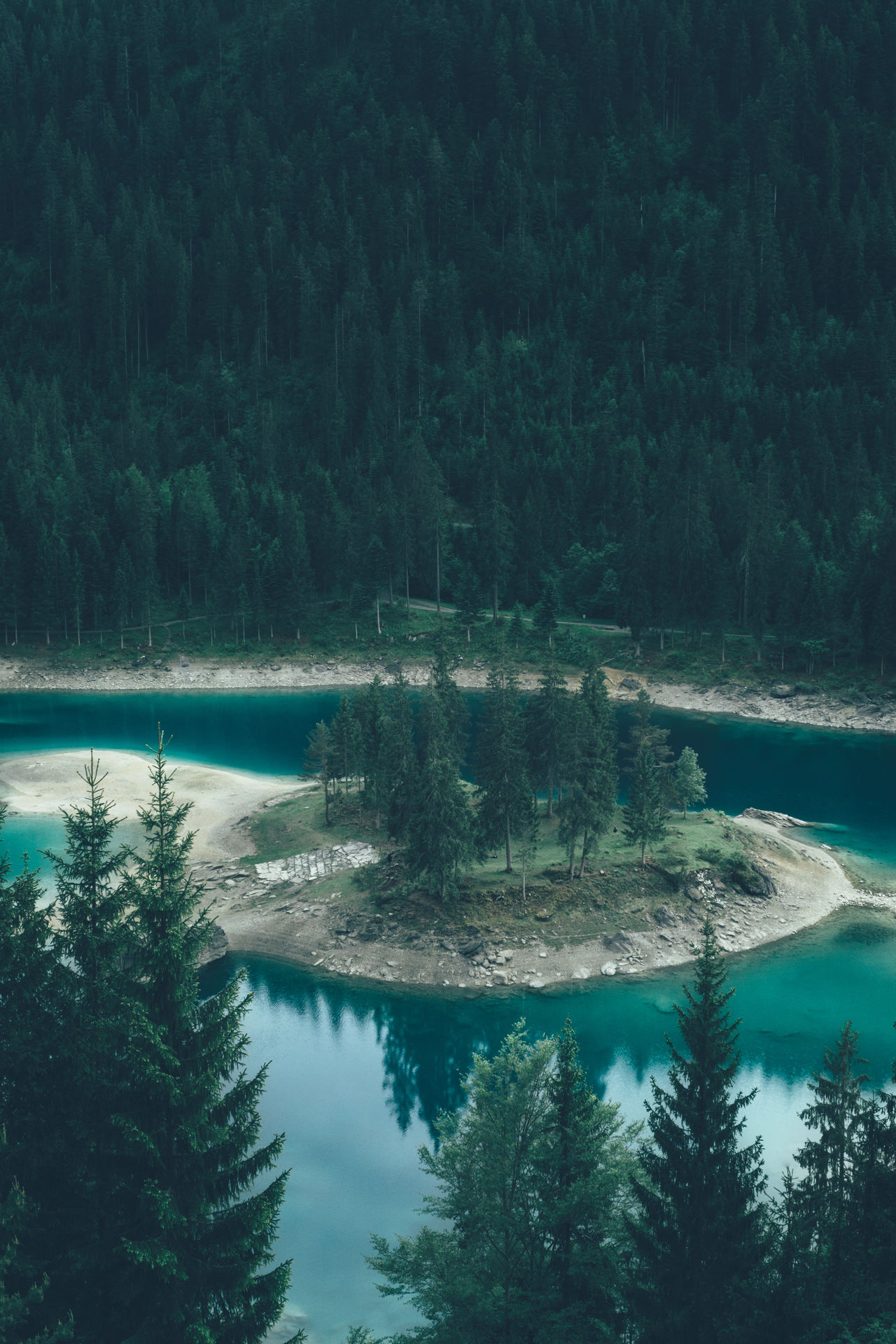Turquoise lake Caumasee hidden in a forrest in Switzerland Beauty In Nature Caumasee Film Fine Art Photography Folk Forrest Graubünden Idyllic Lake Landscape Nature Oasis Outdoors Peace Peaceful Reflection Remote Schweiz Standing Water Switzerland Tranquil Scene Tranquility Tree VSCO Color Palette