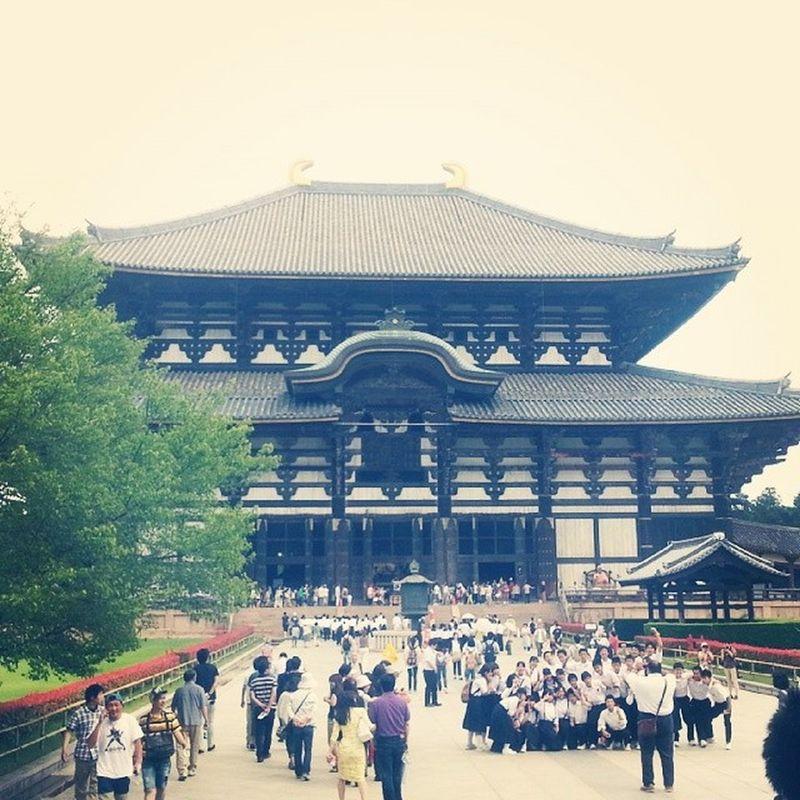東大寺! 修学旅行生とか課外授業とか外国の人でたくさんでした(*'ω'*) Japan Toudaiji