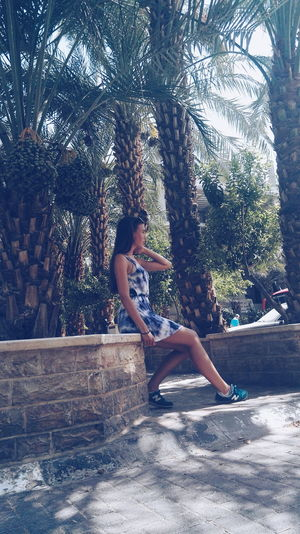 Model Modeling Photoshoot Dress Blue Girl Palm Trees Tan Brunette Hello World Travel Hanging Out Pose Israel Jeriko Adventure Club People And Places