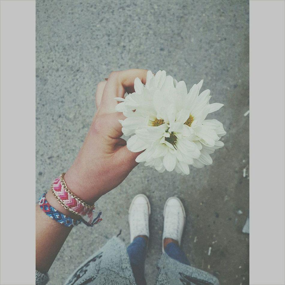 Vscocam #vsco Vscoazerbaijan_ Inmyhand_azerbaijan Flowers