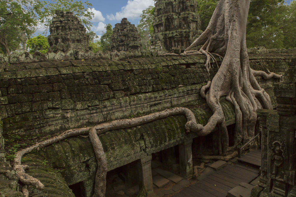 Ta Prohm Angkor Forgotten Ruins Khmer Travel Architecture Cambodia Ancient Siem Reap Angkor Wat Lost Civilization ASIA Culture Tourism Temple Tomb Rider Tempe Tomb Rider Tree Tomb Raider  Building